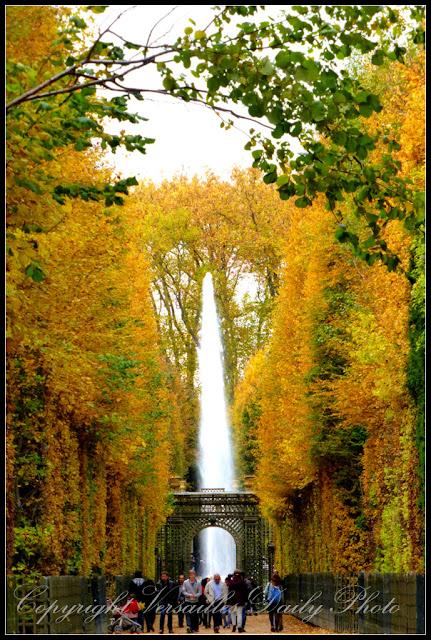Bosquet de l'Encelade automne château Versailles