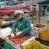 Economía/ Exportaciones agroalimentarias alcanzan 15 mil mdd : Sagarpa