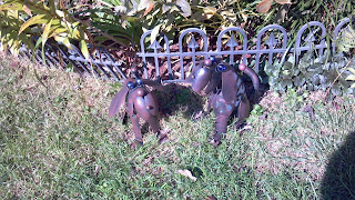 dogs made of metal in a yard