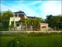 The House Near Rice Fields