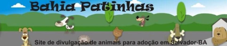 Bahia Patinhas - Cães e gatos para adoção em Salvador, Bahia