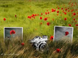 Работа с фото в блоге