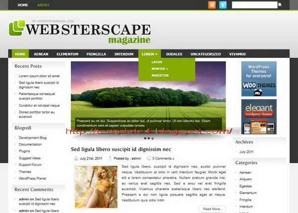 WebsterCape