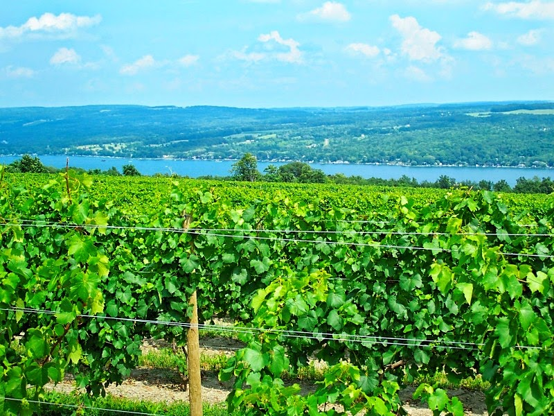Finger Lakes wineries