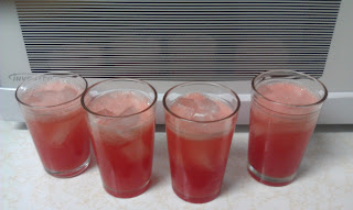 Watermelon Spritzer Drink