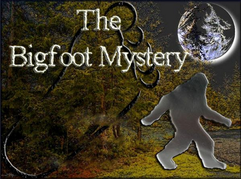 Will The Mystery Of Bigfoot Ever Be Solved?