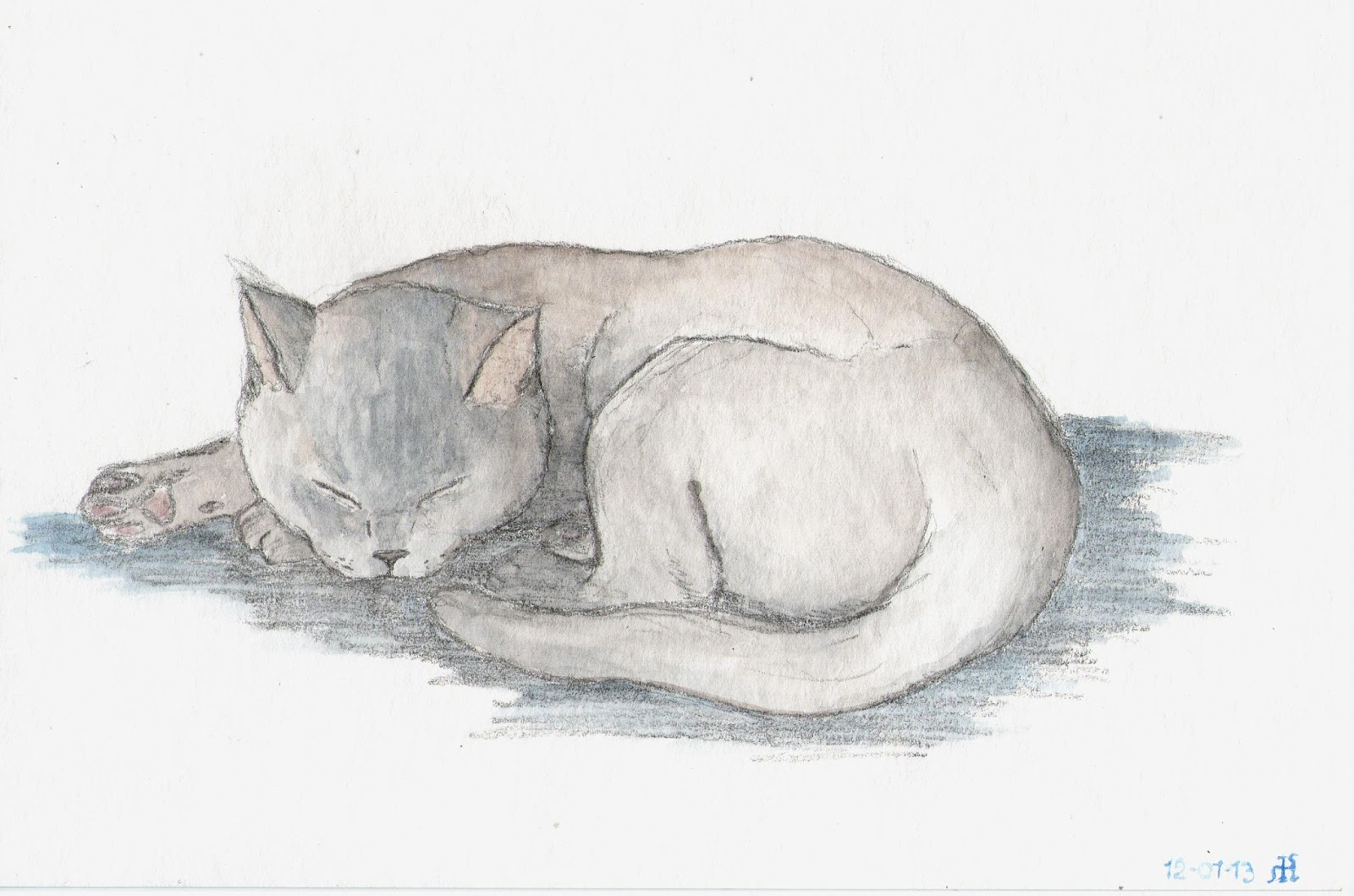 Easy Nature Sketches Sketching a cat is never