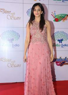 Actress Rakul Preet Singh Latest Pictures in Long Dress at Memu Saitam Dinner with Stars Red Carpet 3