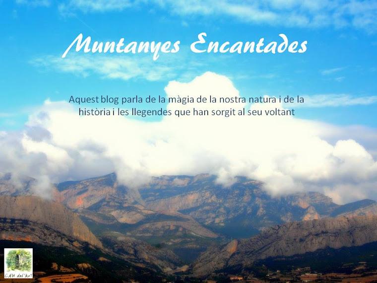 El meu altre blog