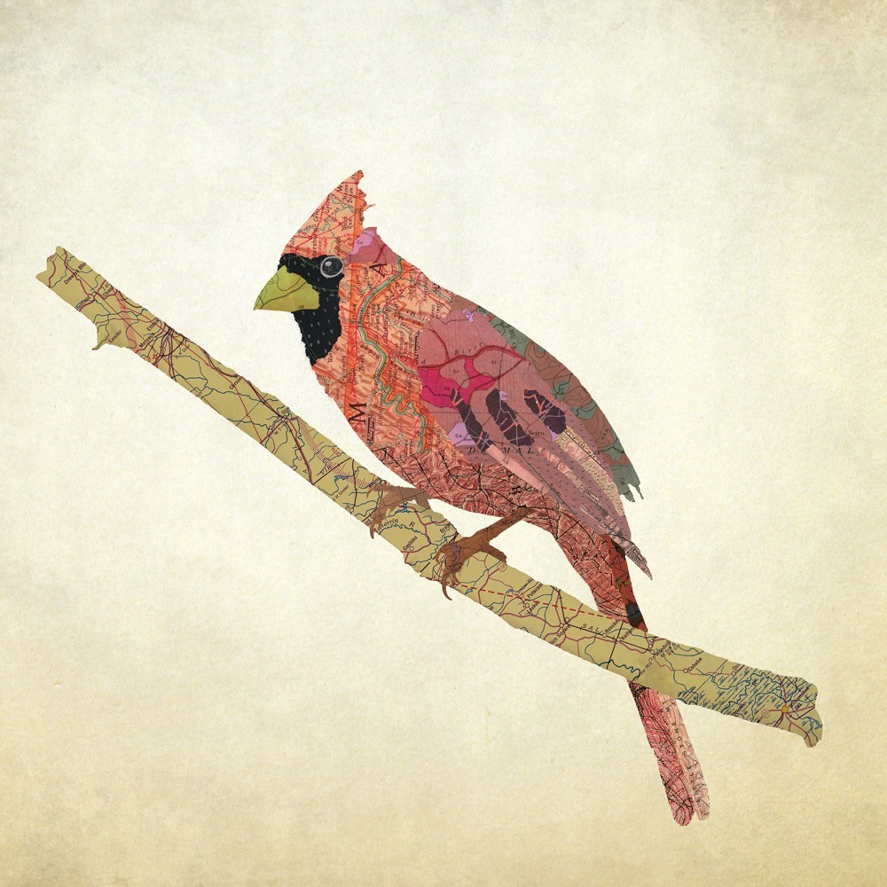 18-Virginia-Northern-Cardinal-Jason-LaFerrera-Cartography-Shaped-to-make-Map-Animals-www-designstack-co