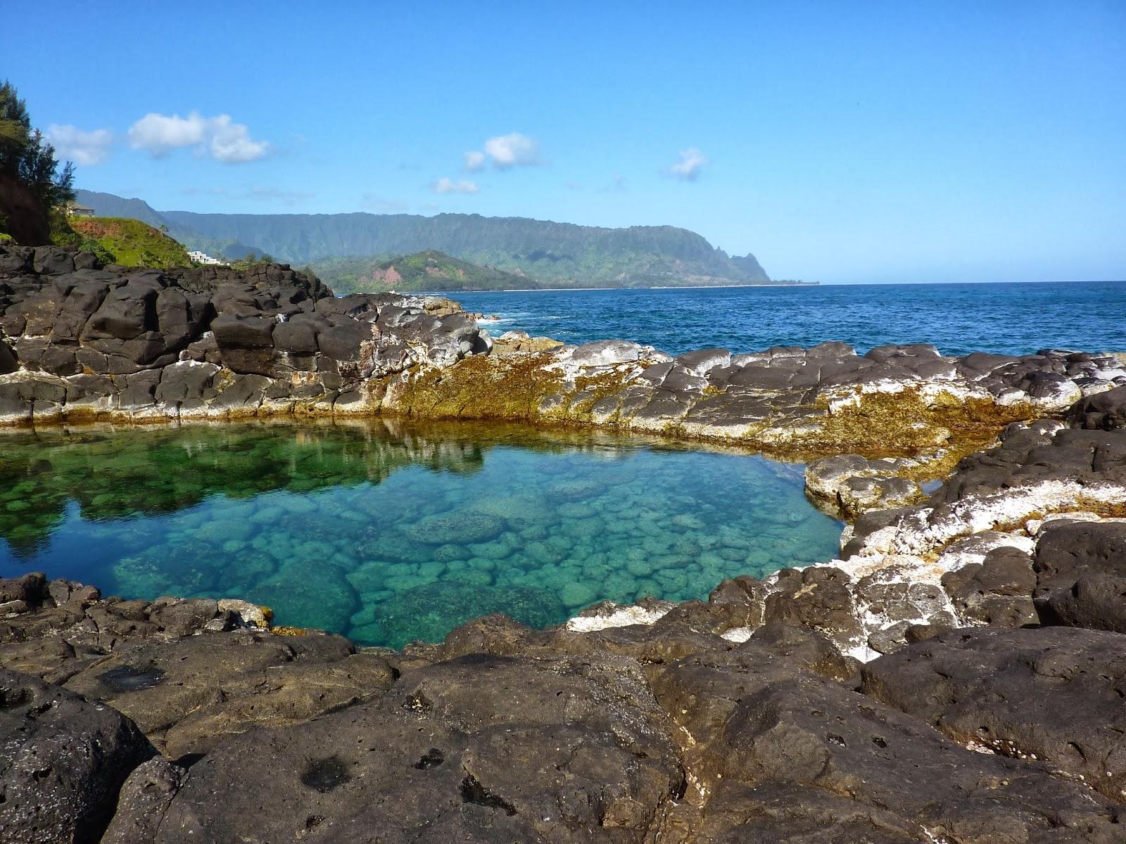 Me and My Green Bin: Highlights of a Trip to Kaua'i