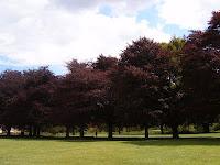Bishops Meadows Hereford