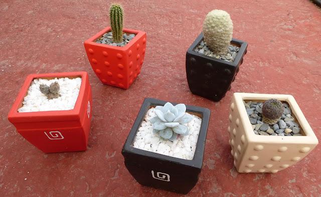 Huitznahuac cactus macetas cuadradas de barro for Macetas de barro pequenas