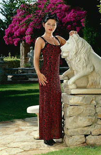 Naughty Lady - rs-VivThomas_Vera---brunette-in-a-red-dress_Vera-A_by_Viv-Thomas_high_0001-739120.jpg