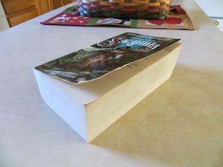 Sacajawea book