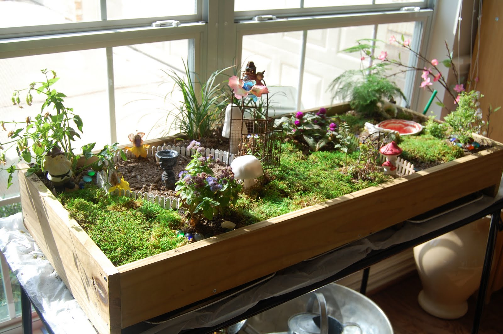 Indoor fairy garden unleash your imagination magical for Indoor gardening videos