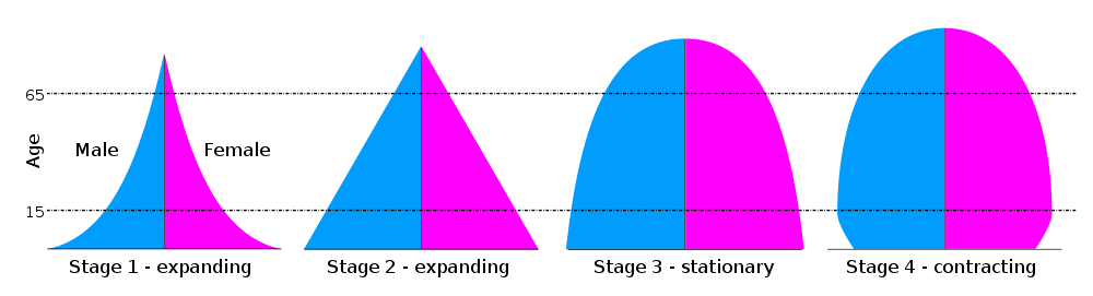 Generic Population Pyramids, showing the four main stages in