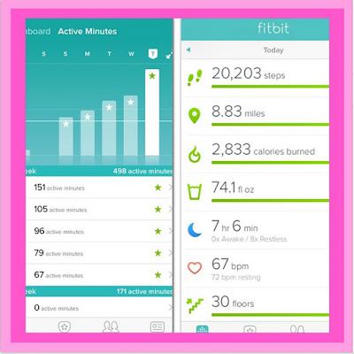 FitBit Activity Level Chart