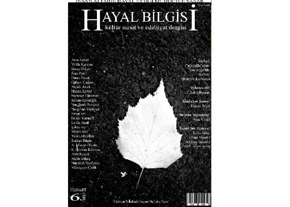 Hayal Bilgisi 6 | Ocak 2012