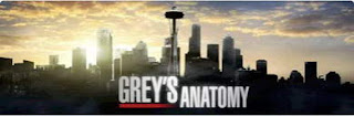 Grey's Anatomy Season 10 (Ongoing) Mini MKV