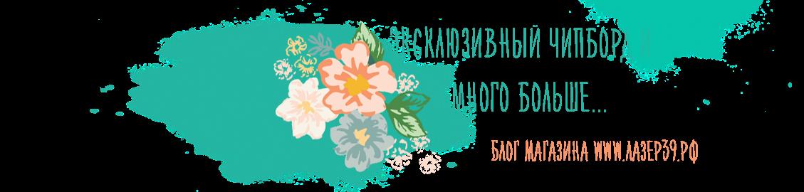 Магазин Чипборда -  Лазер39