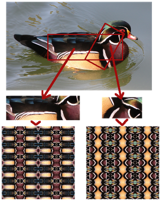 Wood Duck Patterns