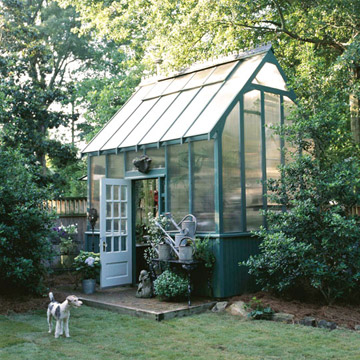 glass garden shed turned greenhouse
