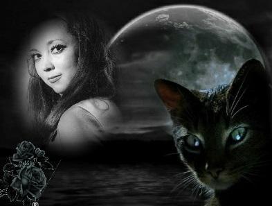 O meu gato preto...
