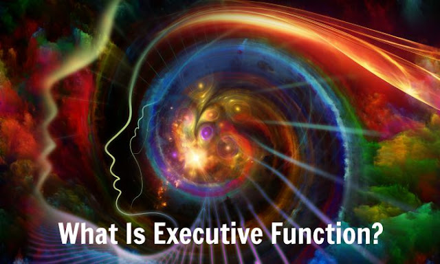 Executive function and its components