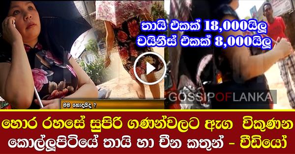 Prostitutes caught on camera in Kollupitiya