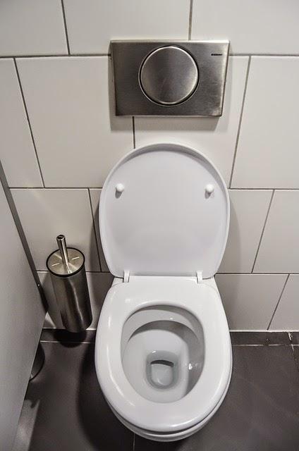 Hémorroïdes et WC