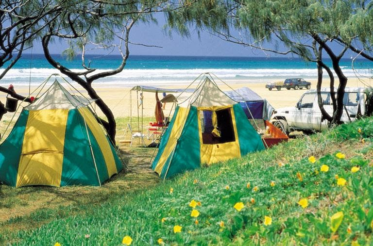 Dog Friendly Camping Airlie Beach