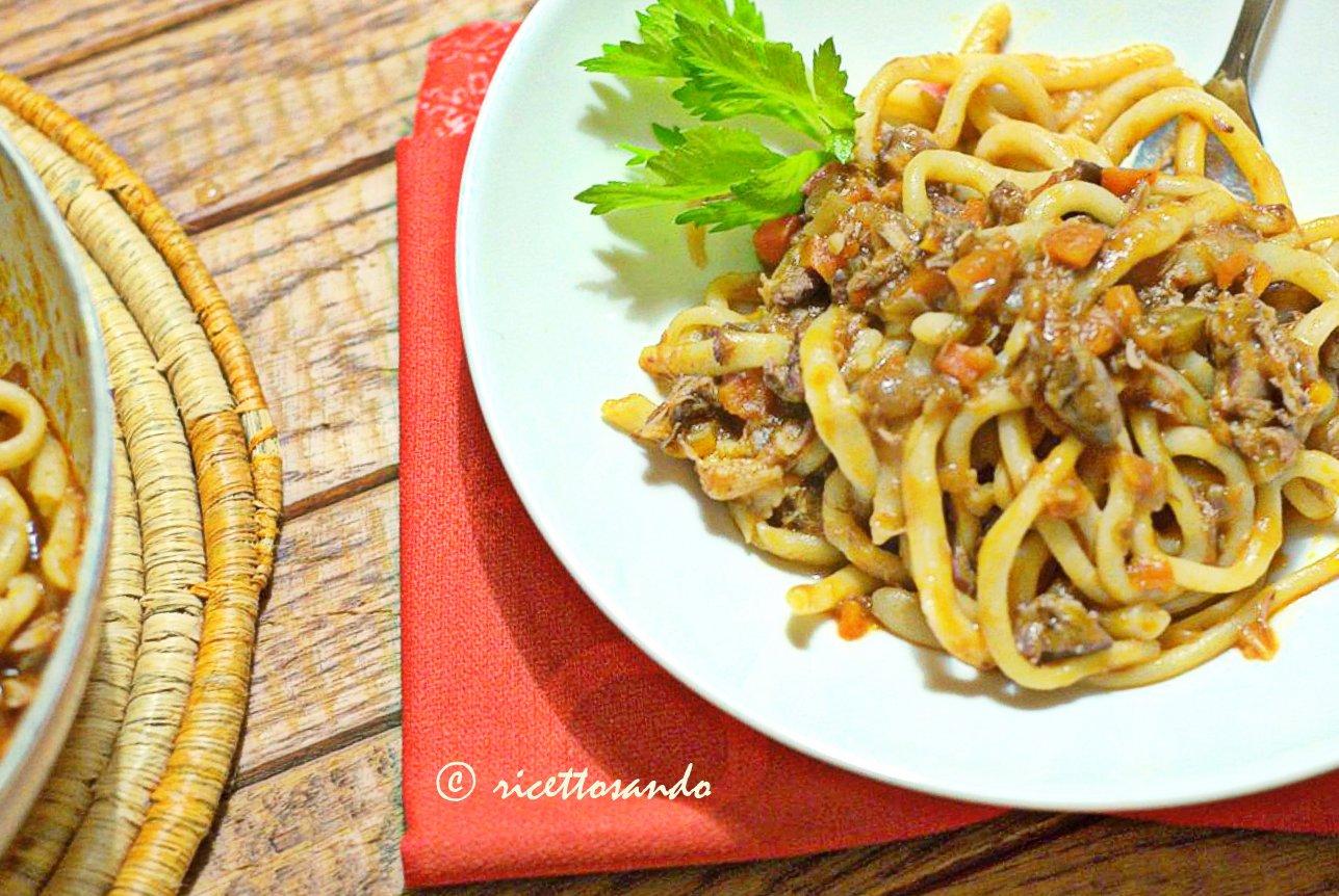 Pici con la nana ricetta di pasta tradizionale condita con sugo d'anatra