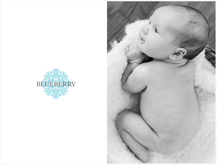 berkeley newborn family portrait with natural light