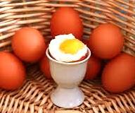 Siapa Bilang Banyak Makan Telur itu Buruk untuk Kesehatan?