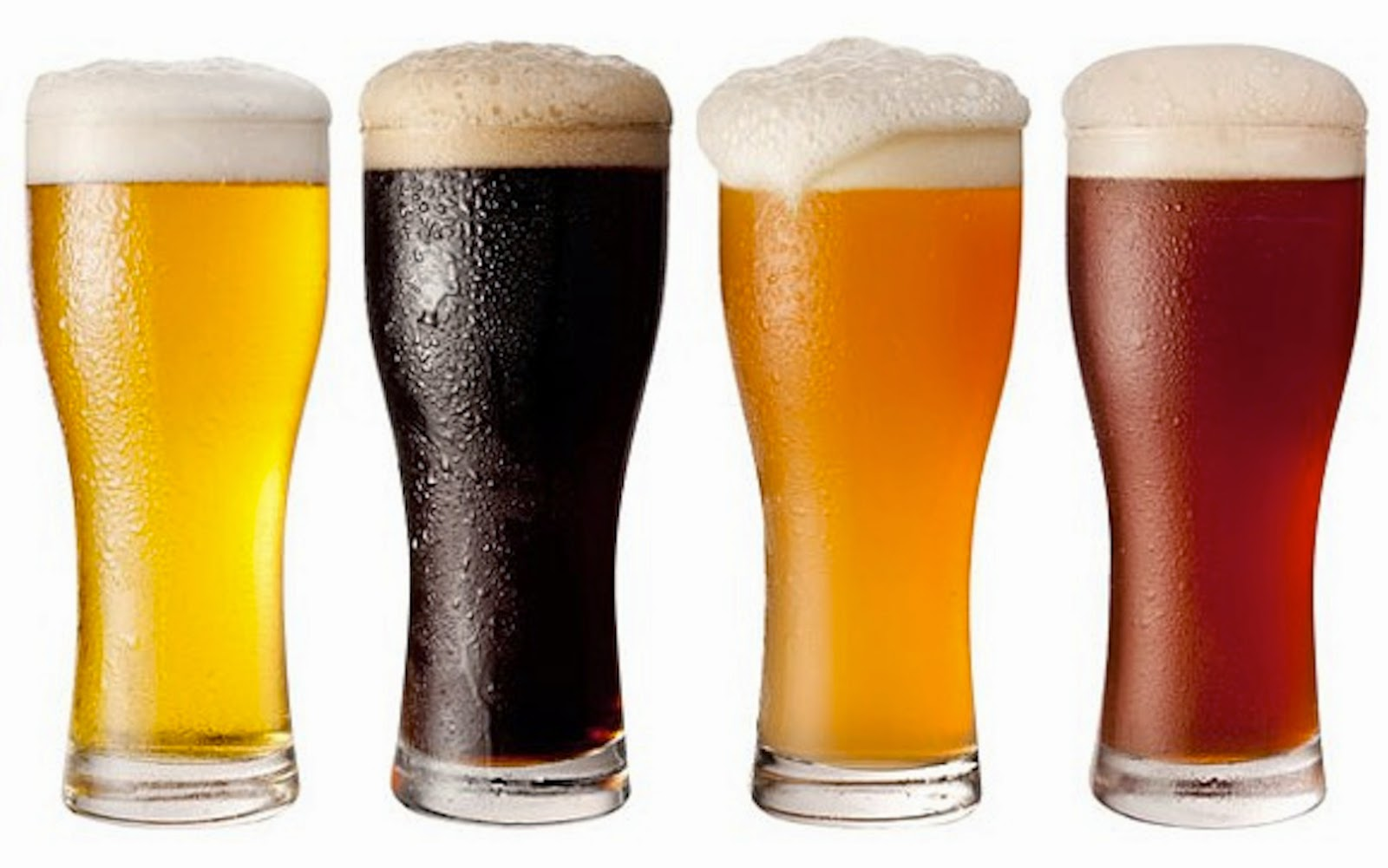 Beer Compound Fight Alzheimer's And Parkinson's Disease