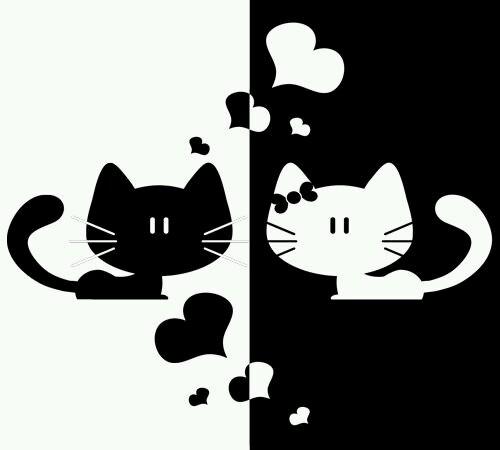 Deux chat illustration noir et blanc