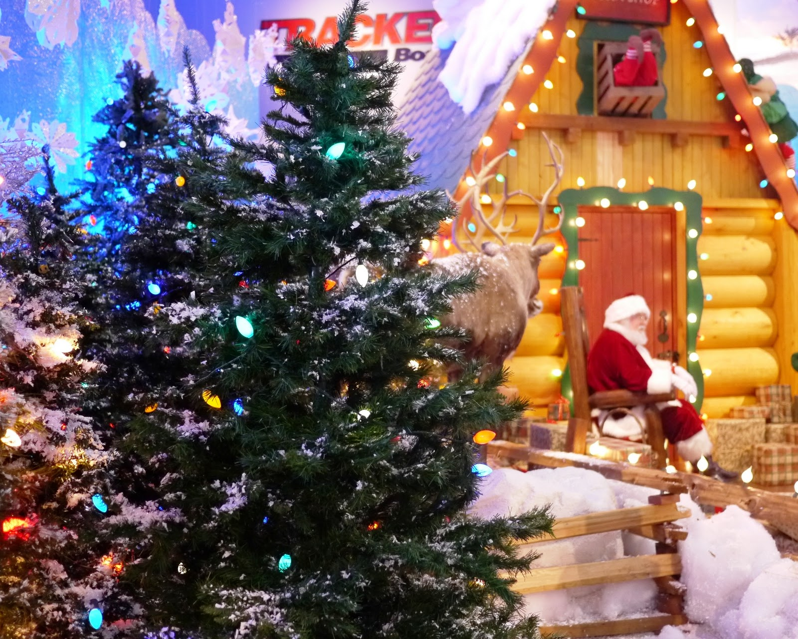 Keeping up with Kids: Bass Pro Shops Santa Land