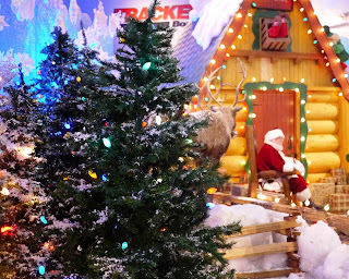 Santa Sitting in Santa Land at Bass Pro Shops