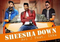 shesha down