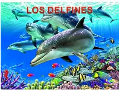 http://elrincondeinfantiljuancarlos1.blogspot.com.es/p/proyecto-el-delfin.html