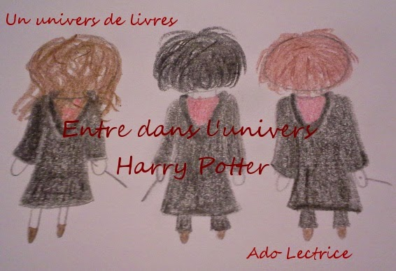 Entre dans l'univers Harry Potter !