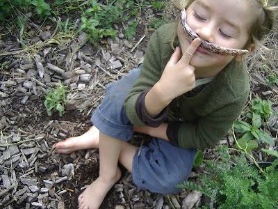 http://3.bp.blogspot.com/-Gj9UWqKlTj8/UF0fzKG88AI/AAAAAAAAEgA/vjOIeDRnigg/s400/maya+bean+and+seed+saving+sept+21+005.jpg