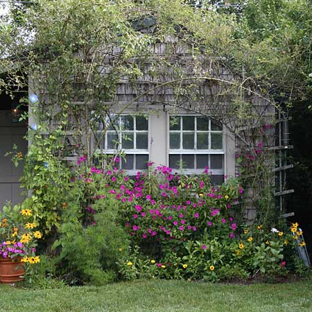 Dr dan 39 s garden tips the charm of cottage gardening for Cottage garden design