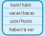 10 ejemplo palabra homogeneas: