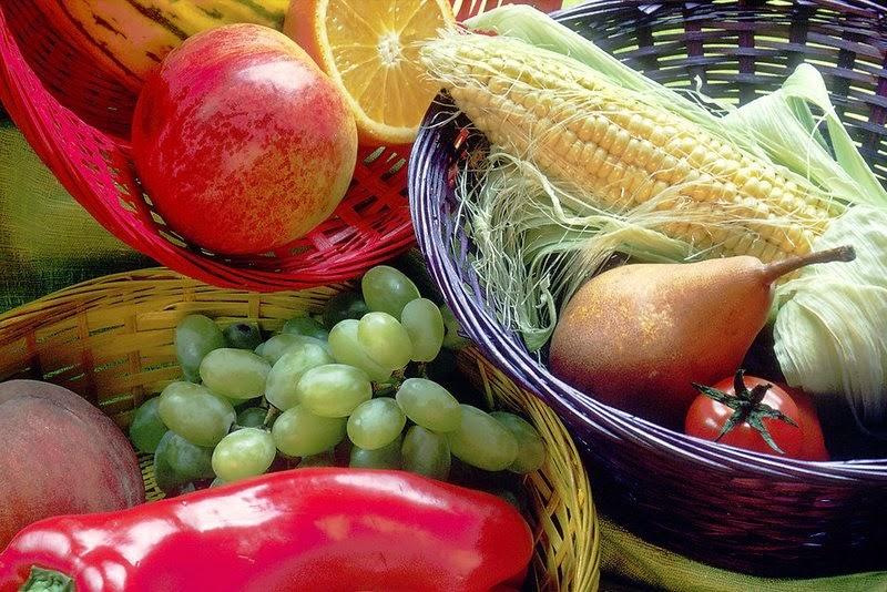 makanan untuk diet alami