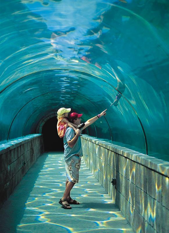 Atlantis Aquarium Cost