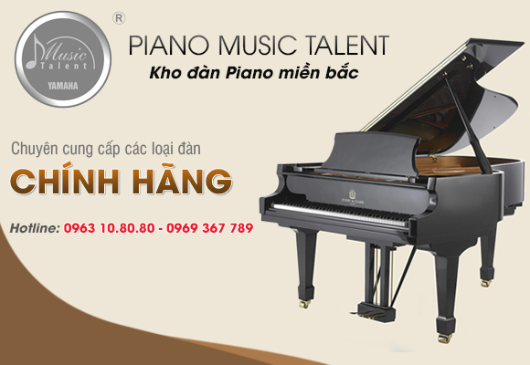tong-dai-ly-dan-piano