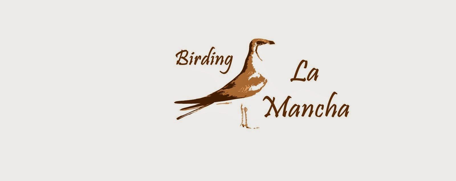 Birding La Mancha