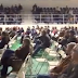 Παρουσίαση της Μελέτης ΟΕΔΑ Κερατέας στη θέση «Φοβόλες - Δεν παρευρέθηκαν οι επικεφαλής των 2 παρατάξεων κκ Λουκάς και Ιατρού ούτε και εκπρόσωποι του Δήμου Σαρωνικού